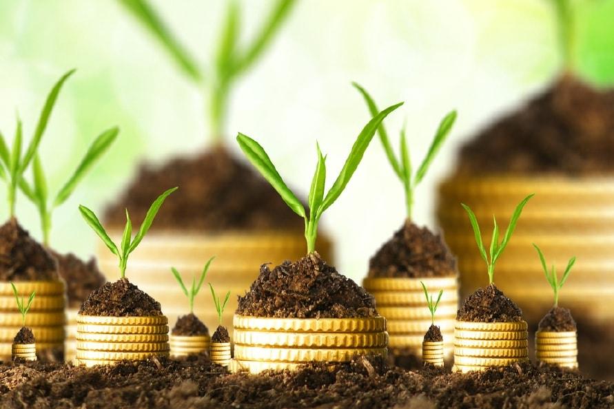 Agrculture Loan, WealthhunterIndia